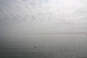 PAYSAGES-Arguin (13)